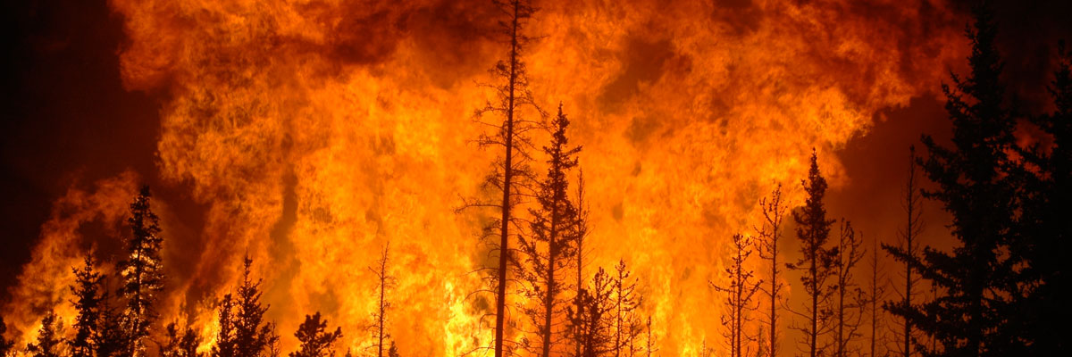 CAP Fullscreen Banner - Forest Fires - Are You Ready When Emergency Strikes